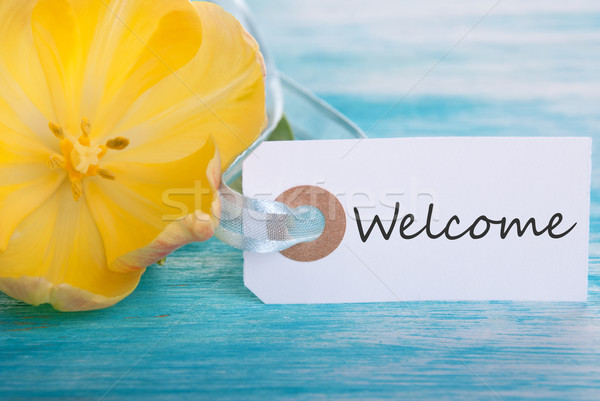 Welcome Tag Stock photo © Nelosa