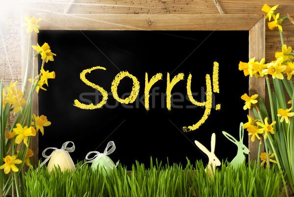 Sunny Narcissus, Easter Egg, Bunny, Yellow Text Sorry Stock photo © Nelosa