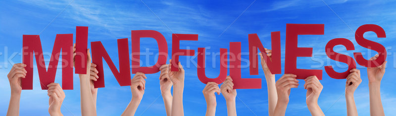 Many People Hands Holding Red Word Mindfulness Blue Sky Stock photo © Nelosa