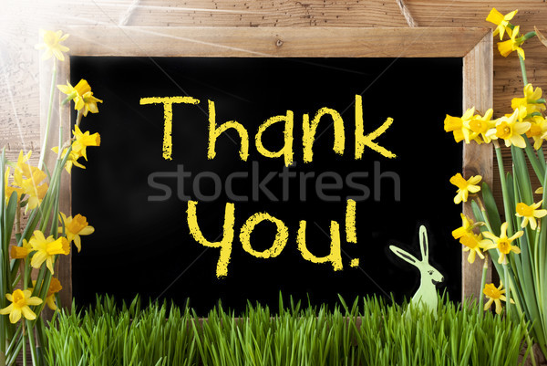 Sunny Narcissus, Easter Bunny, Text Thank You Stock photo © Nelosa