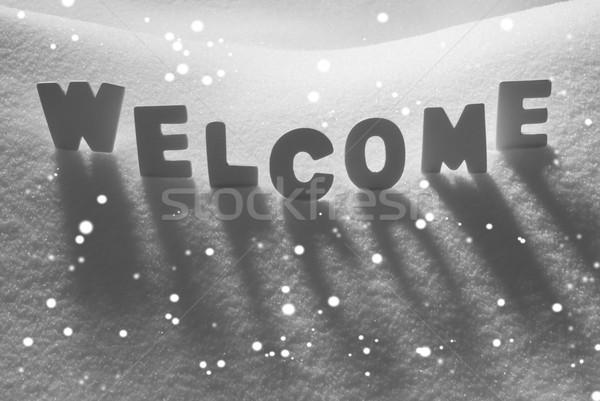 White Word Welcome On Snow, Snowflakes Stock photo © Nelosa