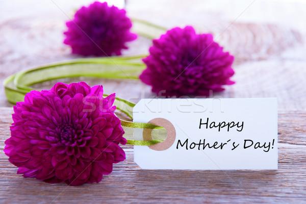 Foto stock: Etiqueta · feliz · dia · das · mães · roxo · flores · verde · fita