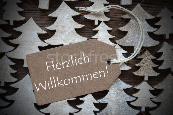 Brown Christmas Label Willkommen Mean Welcome Stock photo © Nelosa