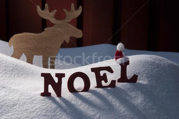 カード ムース 雪 クリスマス 赤 文字 ストックフォト © Nelosa