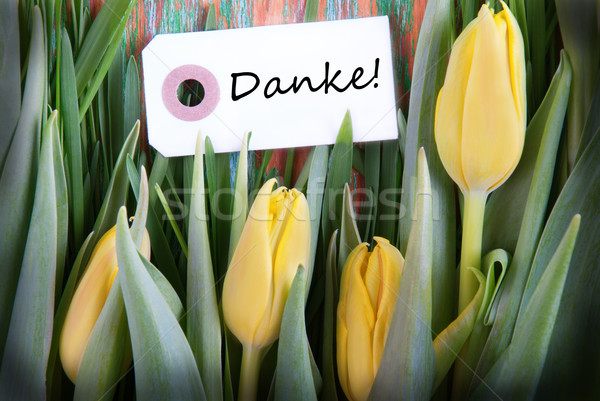 Tulip Background with Danke Stock photo © Nelosa
