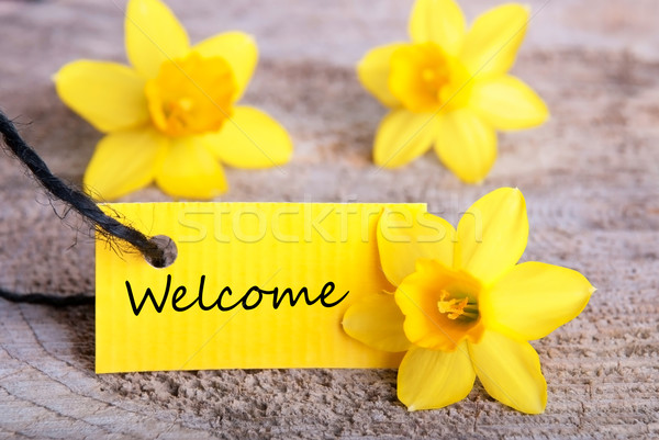 Yellow Label with Welcome Stock photo © Nelosa