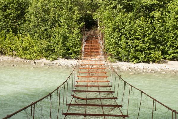 Photo stock: Dangereux · pont · rouillée · rivière · eau · forêt