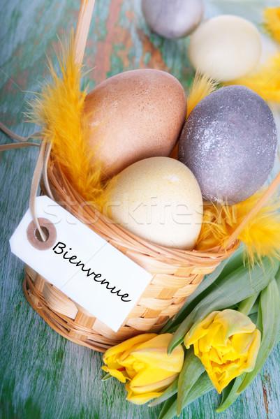 Easter Nest with Bienvenue Stock photo © Nelosa