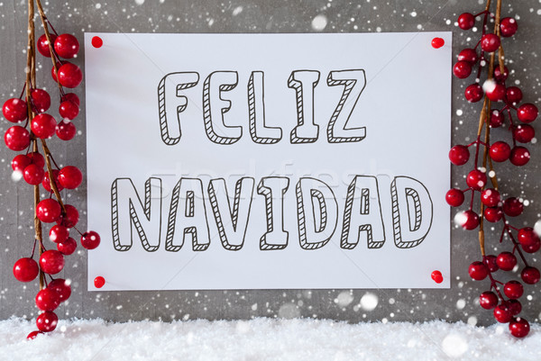 Label, Snowflakes, Decoration, Feliz Navidad Means Merry Christmas Stock photo © Nelosa