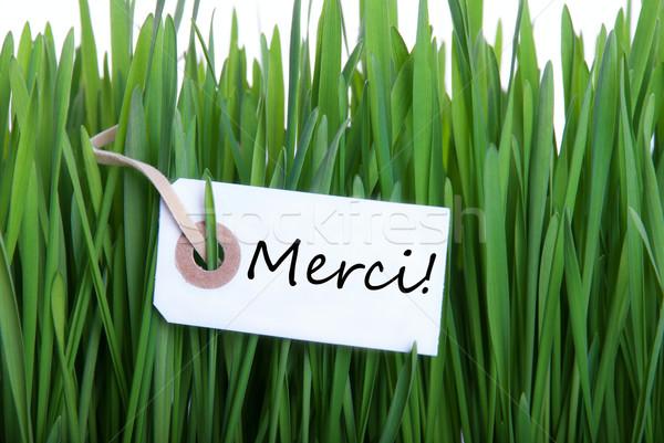 Grass background with Merci Stock photo © Nelosa