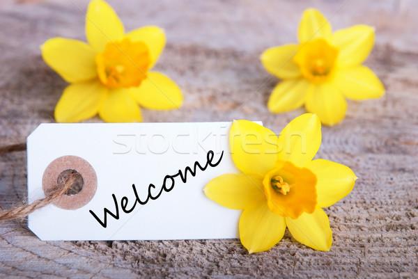 Welcome Sign Stock photo © Nelosa