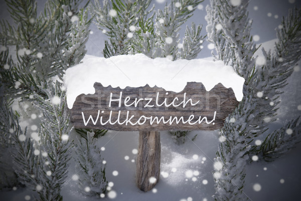 Christmas Sign Snowflakes Fir Tree Willkommen Means Welcome Stock photo © Nelosa