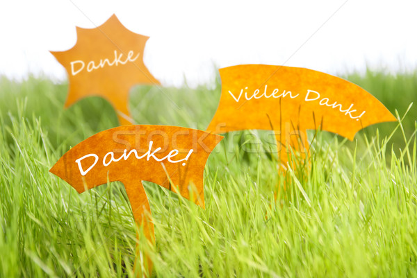 Three Labels With German Danke Which Means Thank You On Grass Stock photo © Nelosa