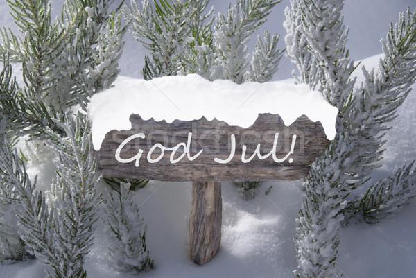 Signe neige dieu joyeux Noël Photo stock © Nelosa