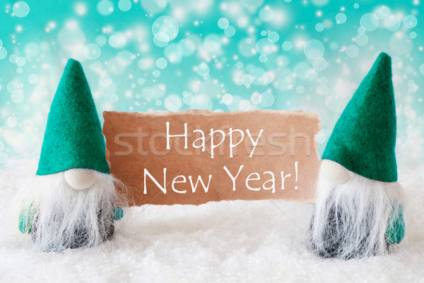 Turqoise Gnomes With Card, Happy New Year Stock photo © Nelosa