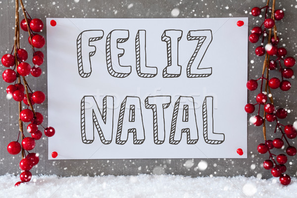 Label, Snowflakes, Decoration, Feliz Natal Means Merry Christmas Stock photo © Nelosa