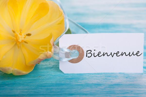 Tag with Bienvenue Stock photo © Nelosa