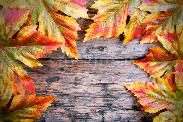 Maple wood Stock Photos, Stock Images and Vectors | Stockfresh