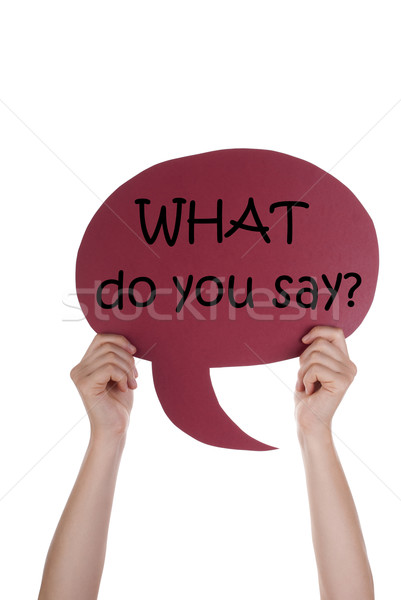 Red Speech Balloon With What Do You Say Stock photo © Nelosa