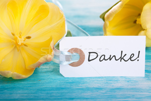 Label mit Danke Stock photo © Nelosa