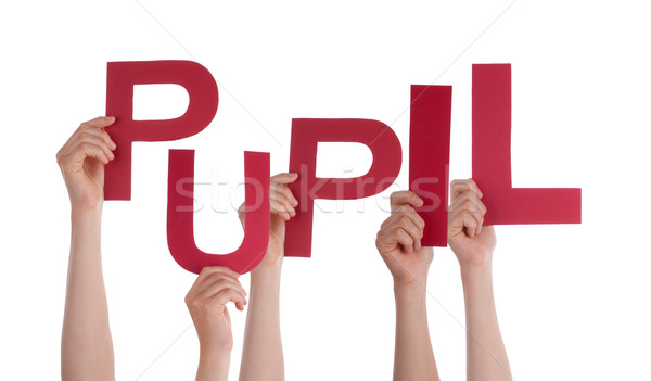 Many People Hands Holding Red Word Pupil  Stock photo © Nelosa