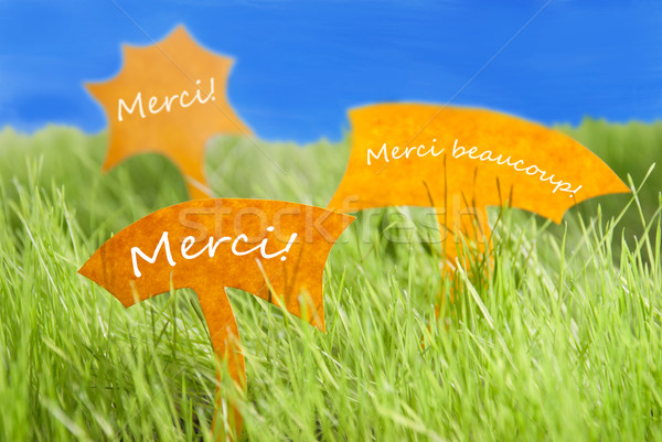 Three Labels With French Merci Which Means Thank You And Blue Sky Stock photo © Nelosa
