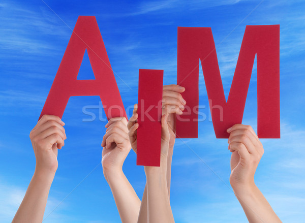 Many People Hands Holding Red Word Aim Blue Sky Stock photo © Nelosa