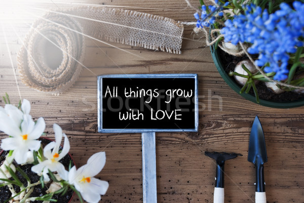 Sunny Spring Flowers, Sign, Quote All Things Grow With Love Stock photo © Nelosa