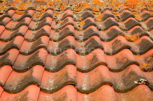 roofing tiles Stock photo © nelsonart