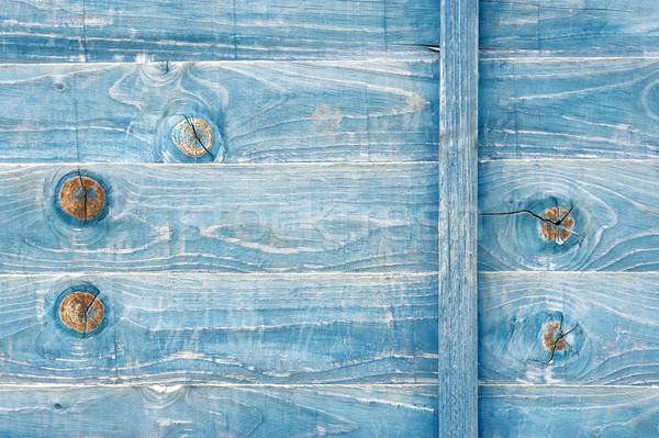 Kék viharvert fa foltos vívás panel Stock fotó © nelsonart