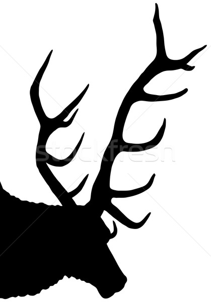 stag silhouette Stock photo © nelsonart