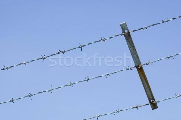 Szögesdrót vívás kék ég fém kék kerítés Stock fotó © nelsonart
