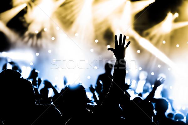 Viver concerto multidão música mãos Foto stock © nelsonart