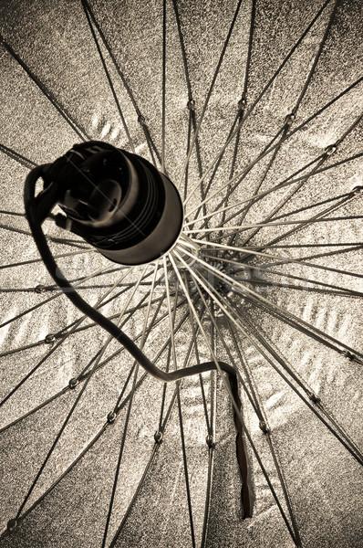 Stüdyo aydınlatma stroboskop şemsiye ışık Stok fotoğraf © nelsonart