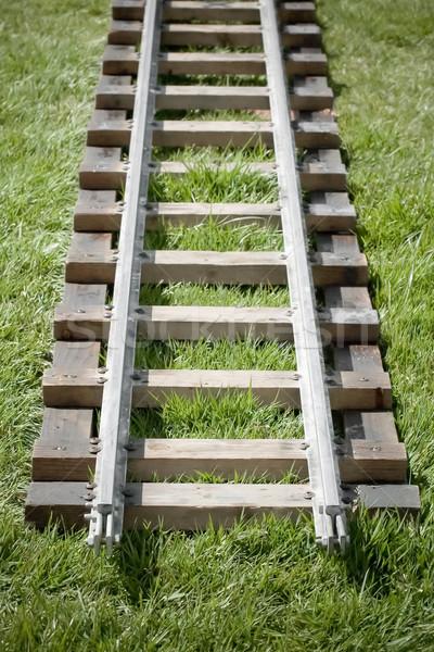 Befejezés vonal keskeny kaliber vasút útvonal Stock fotó © nelsonart