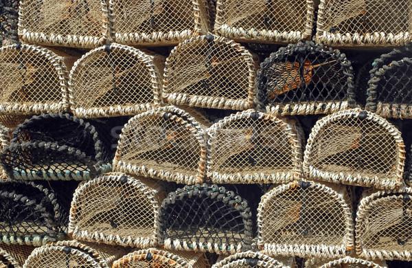 ロブスター 在庫 海 背景 釣り 背景 ストックフォト © nelsonart