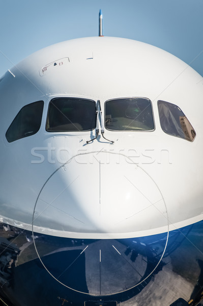 passenger jet Stock photo © nelsonart