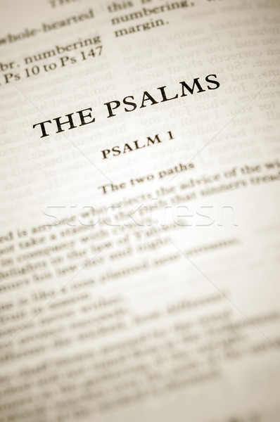 the psalms Stock photo © nelsonart