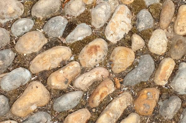 камней фон большой саду каменные Сток-фото © nelsonart