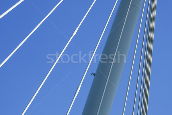 suspension cables Stock photo © nelsonart