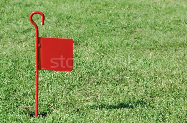 Crazy гольф флаг грубо газона копия пространства Сток-фото © nelsonart