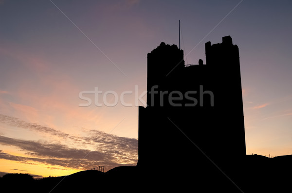 castle silhouette Stock photo © nelsonart