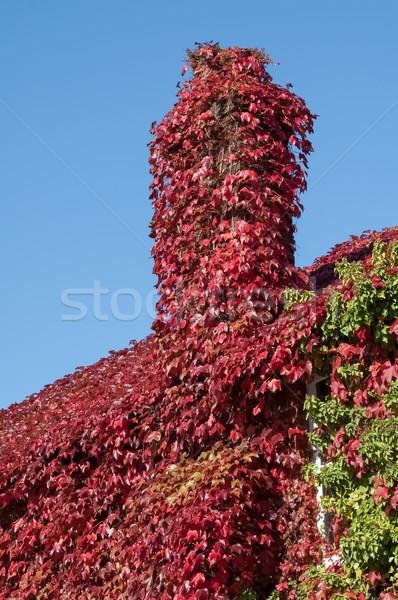 Hera casa de campo vermelho casa abstrato Foto stock © nelsonart