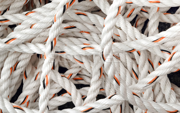 white rope Stock photo © nelsonart