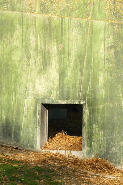 animal encloseure Stock photo © nelsonart