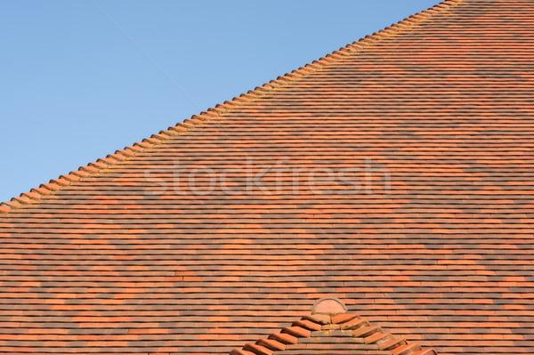 крыши плитки аннотация красный плиточные Blue Sky Сток-фото © nelsonart