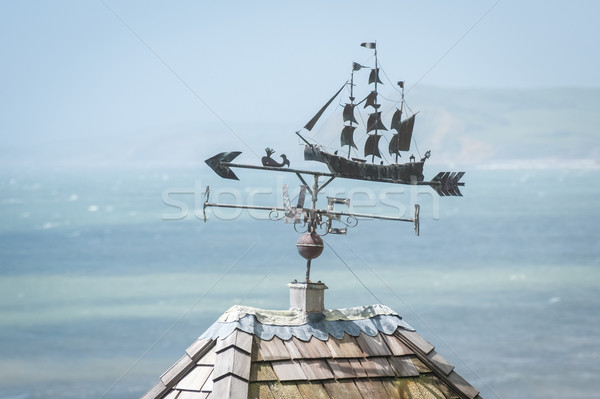 weather vane Stock photo © nelsonart