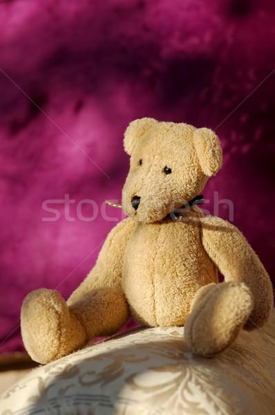 мишка небольшой мягкой игрушку несут сидят Сток-фото © nelsonart