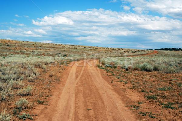 Rural road Stock photo © nemalo