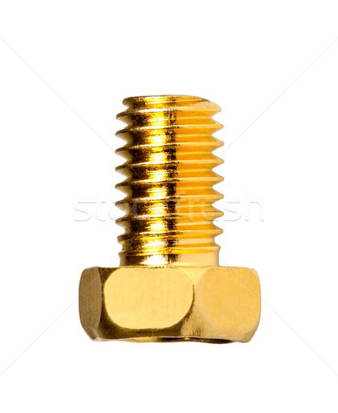 Gold screw Stock photo © nemalo